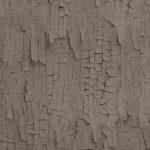 218022 150x150 Tapety ścienne BN Essential